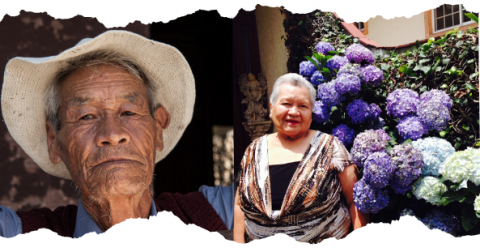 """México: """"El maltrato y el abuso contra las personas mayores son fenómenos que, durante el último año, se han recrudecido y se incrementan en función de desigualdades acumuladas a lo largo de la vida"""""""